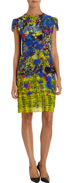 Erdem Printed Dress