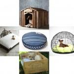 Top 5 Snob Dog Beds