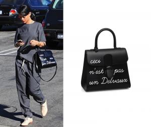 """Rihanna x Delvaux """"Ceci n'est pas un Delvaux"""" Brillant MM"""