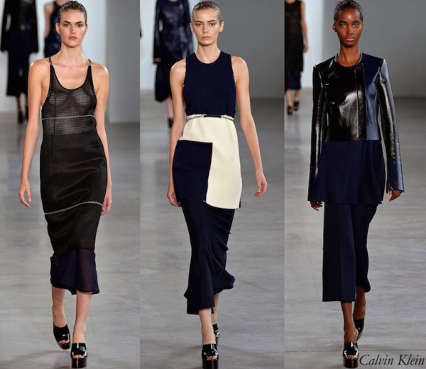 Calvin Klein Collection Spring 2015 Collection