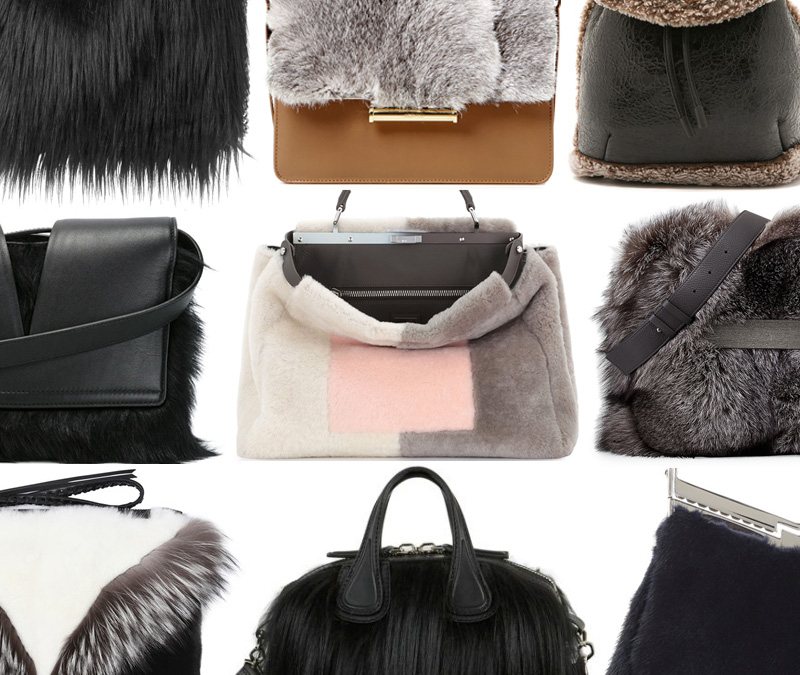 Fendi Purse Fur