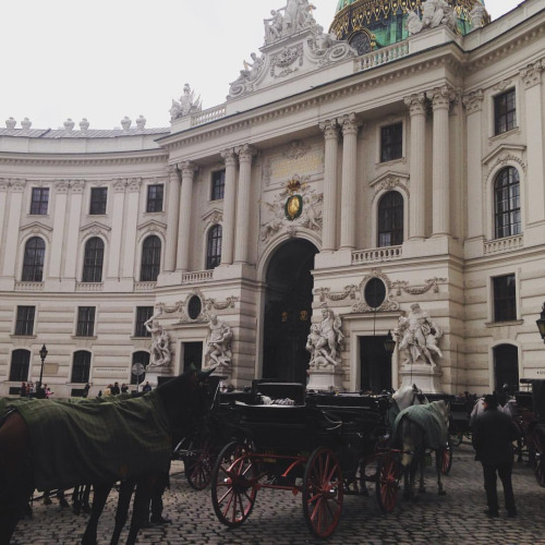 The Snob Guide to Vienna