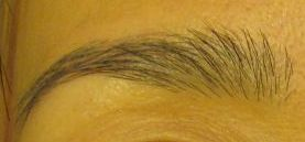 ceesbrows4.jpg