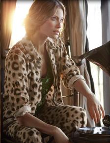 peteralexander_leopard.png