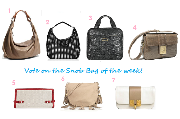 Vote_snob_bags_redo1.png