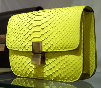 Celine Classic Python Bag Resort 2011 - Snob Essentials