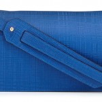 Loewe Calfskin Clutch Bag with Shoulder Strap