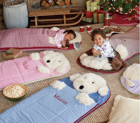Pottery Barn Kids Shaggy Dog And Sherpa Sleeping Bags